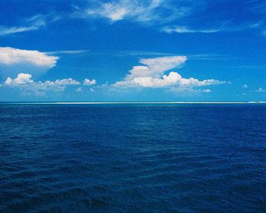 oceano homeopatía secta