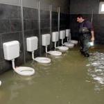 Un estudio revela que los lavabos con luz automática acumulan más gotas en la tapa del water