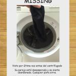 El calcetín que se pierde en la lavadora