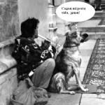 Entrevista con un perro de un perroflauta