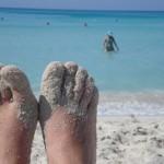 Instagram alerta de una inminente invasión de pezuñas en las playas españolas