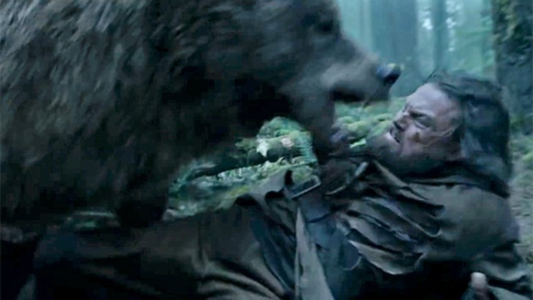 lucha oso leonardo